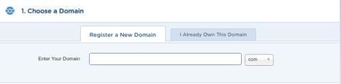 3-Choose a Domain